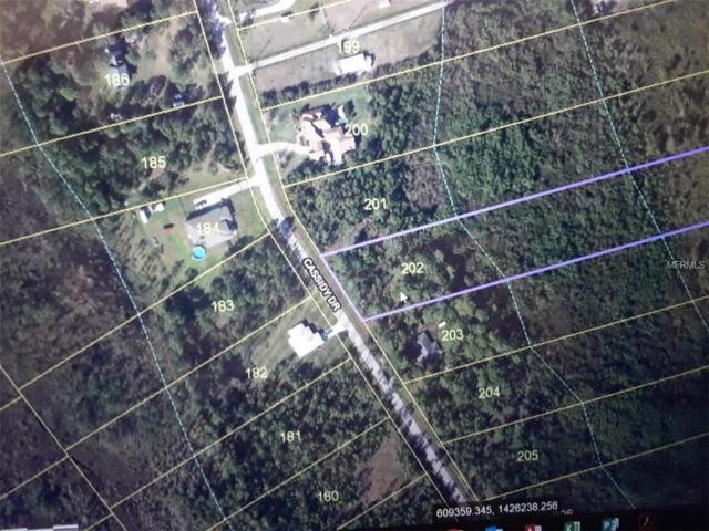 1725 Cassidy Drive, Saint Cloud, FL 34771 (MLS #O5721259) :: Griffin Group