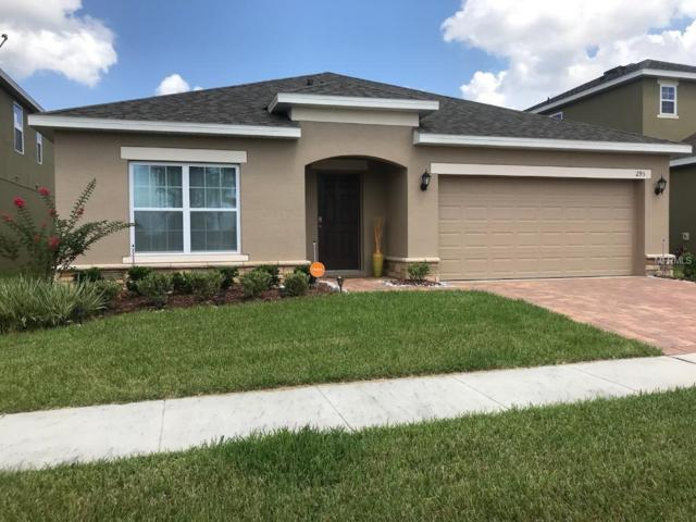 295 Williamson Drive, Davenport, FL 33897 (MLS #O5721322) :: The Light Team