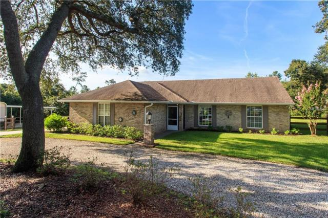 167 Sycamore Drive, Debary, FL 32713 (MLS #O5721530) :: Griffin Group