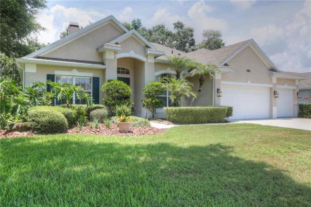 4054 Caledonia Avenue, Apopka, FL 32712 (MLS #O5721633) :: Bustamante Real Estate