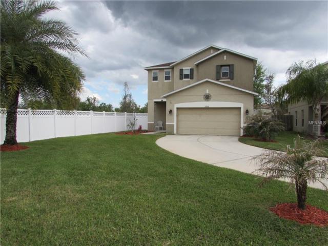 18946 Parapet Place, Land O Lakes, FL 34638 (MLS #O5721640) :: Cartwright Realty