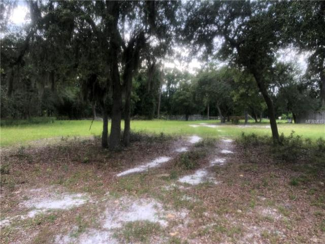 Cattle Drive Trail, Geneva, FL 32732 (MLS #O5721694) :: Team Touchstone