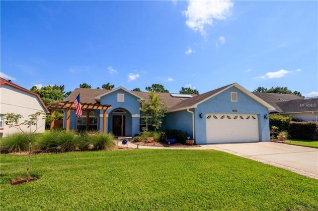 11561 Blackmoor Drive, Orlando, FL 32837 (MLS #O5721727) :: Dalton Wade Real Estate Group
