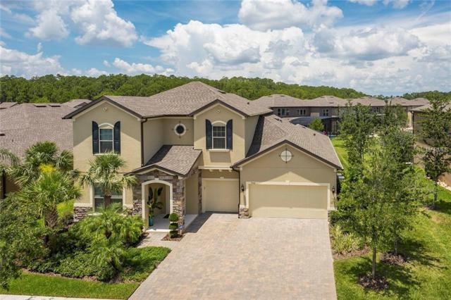 9518 Prince Harry Drive, Orlando, FL 32836 (MLS #O5721772) :: StoneBridge Real Estate Group