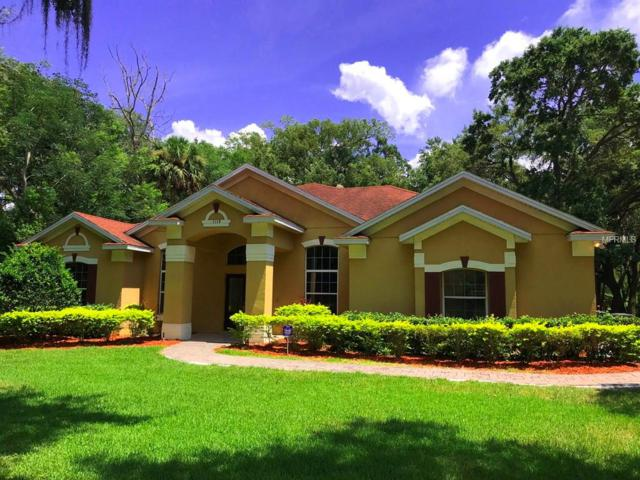 1118 Brick Road, Winter Garden, FL 34787 (MLS #O5721790) :: Mark and Joni Coulter | Better Homes and Gardens