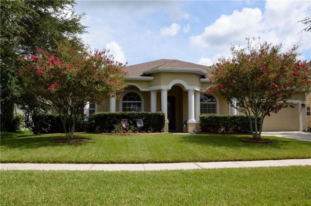 569 Belhaven Falls Drive, Ocoee, FL 34761 (MLS #O5722007) :: StoneBridge Real Estate Group