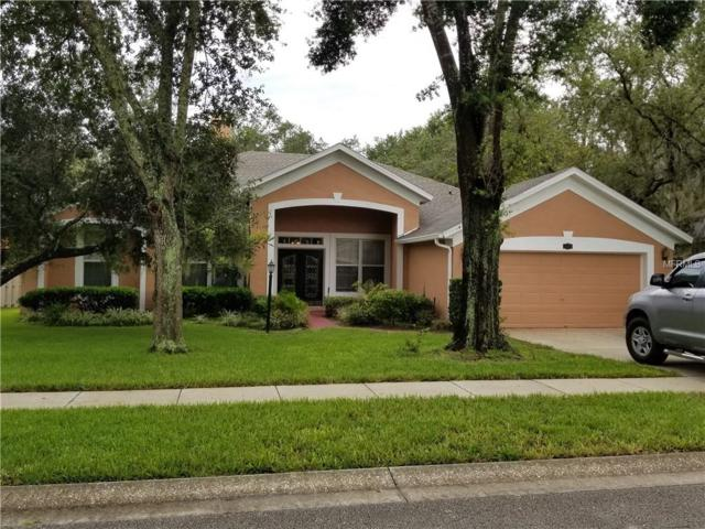 1054 Shimmering Sand Drive, Ocoee, FL 34761 (MLS #O5722048) :: StoneBridge Real Estate Group