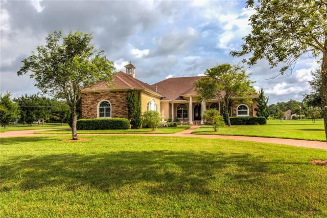8609 Bow Court, Orlando, FL 32836 (MLS #O5722274) :: Premium Properties Real Estate Services