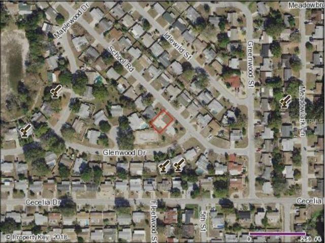 5037 School Road, New Port Richey, FL 34653 (MLS #O5722353) :: The Duncan Duo Team