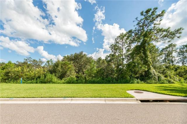 17602 Grove Blossom, Winter Garden, FL 34787 (MLS #O5722788) :: The Duncan Duo Team