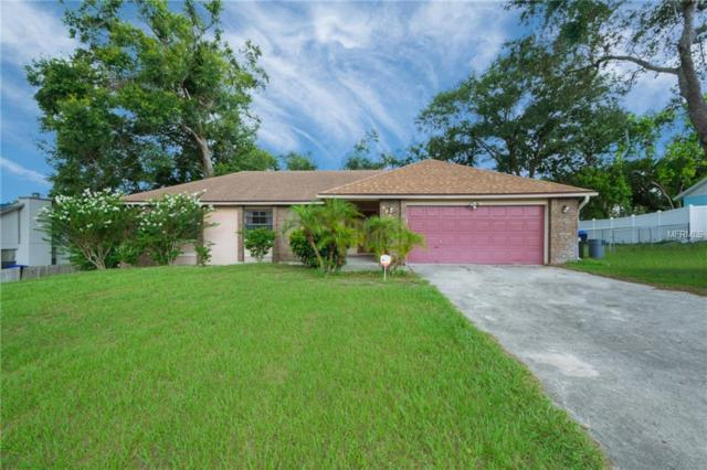 5924 White Egret Lane, Orlando, FL 32810 (MLS #O5723251) :: The Light Team
