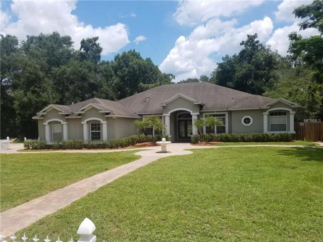 30532 Apawamis Drive, Mount Plymouth, FL 32776 (MLS #O5723761) :: Griffin Group