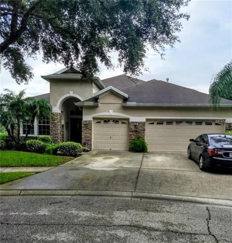 6011 Tealside Court, Lithia, FL 33547 (MLS #O5724175) :: The Duncan Duo Team