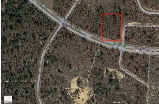 Sunny Hills Boulevard, Chipley, FL 32428 (MLS #O5724389) :: The Duncan Duo Team