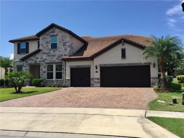 8537 Geddes Loop, Orlando, FL 32836 (MLS #O5724526) :: Team Virgadamo