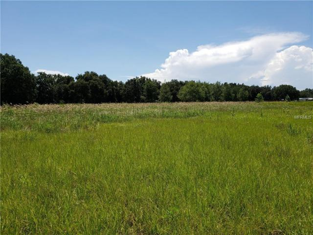 Lake Pickett Drive, Groveland, FL 34736 (MLS #O5724755) :: Griffin Group
