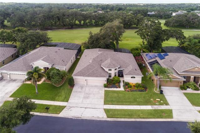 10030 Marsh Pointe Drive, Orlando, FL 32832 (MLS #O5725219) :: The Light Team