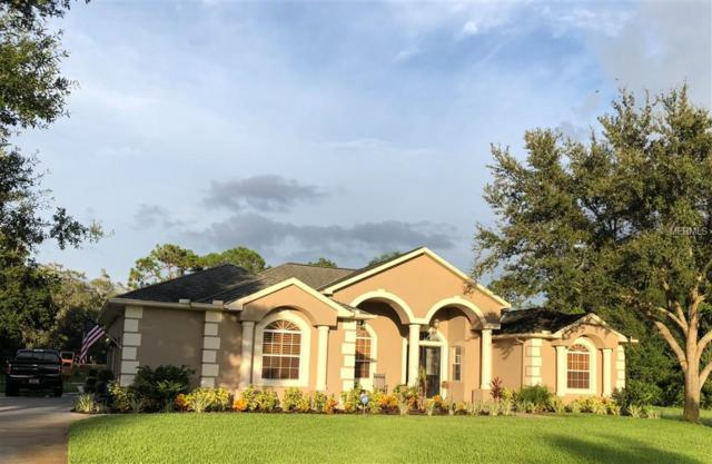 2938 Shipston Avenue, New Port Richey, FL 34655 (MLS #O5725232) :: Mark and Joni Coulter | Better Homes and Gardens