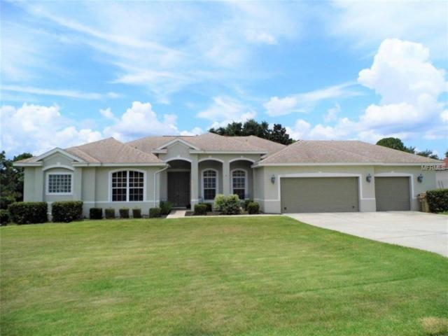 12561 Katherine Circle, Clermont, FL 34711 (MLS #O5725460) :: RealTeam Realty