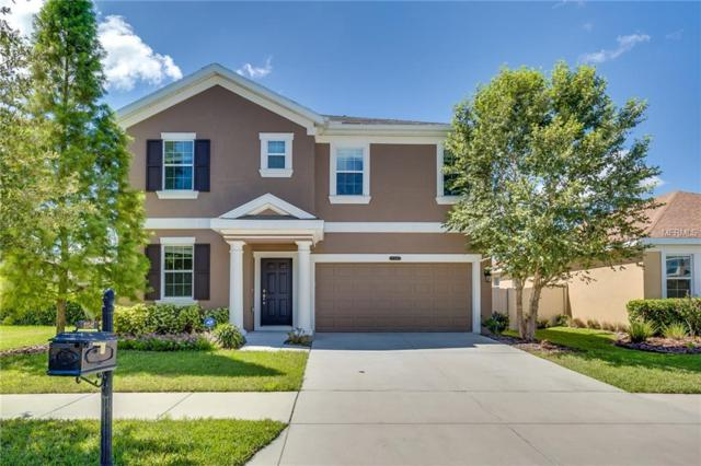 21542 Southern Charm Drive, Land O Lakes, FL 34637 (MLS #O5725696) :: Team Bohannon Keller Williams, Tampa Properties