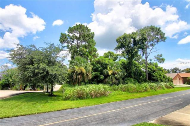 2541 Cross Country Drive, Port Orange, FL 32128 (MLS #O5725781) :: The Duncan Duo Team