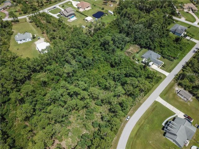 Big Bend Drive, Saint Cloud, FL 34771 (MLS #O5726344) :: Griffin Group