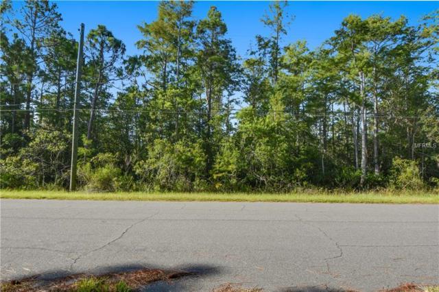 20828 Quinlan Street 3A, Orlando, FL 32833 (MLS #O5726351) :: Premium Properties Real Estate Services