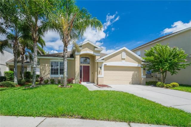 9712 Heron Pointe Drive, Orlando, FL 32832 (MLS #O5726375) :: Godwin Realty Group