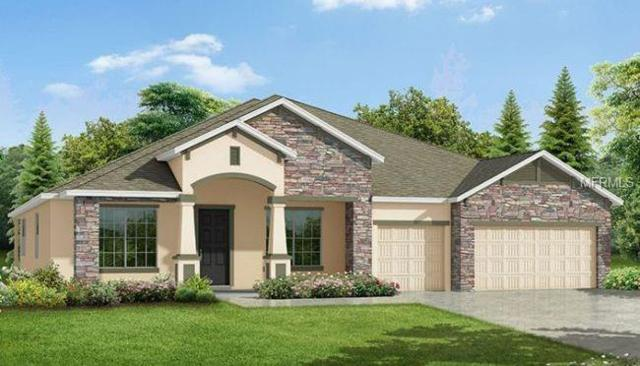 10168 Florence Ridge Drive, Clermont, FL 34711 (MLS #O5726577) :: Ideal Florida Real Estate