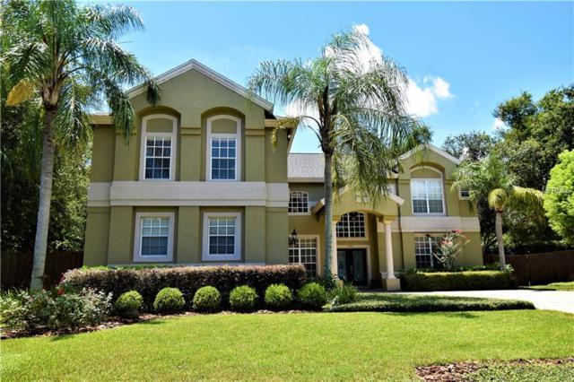 3607 Pompano Court, Gotha, FL 34734 (MLS #O5727037) :: G World Properties