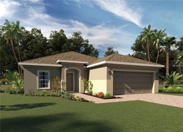 133 Green Branch Boulevard, Groveland, FL 34736 (MLS #O5727078) :: RealTeam Realty