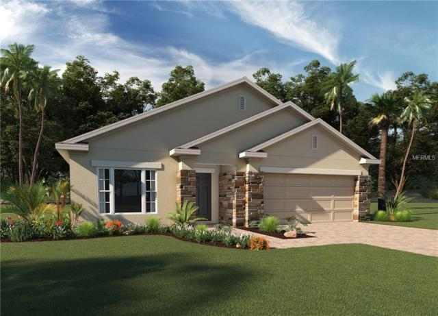 496 Sardinia Circle, Davenport, FL 33837 (MLS #O5727110) :: The Duncan Duo Team