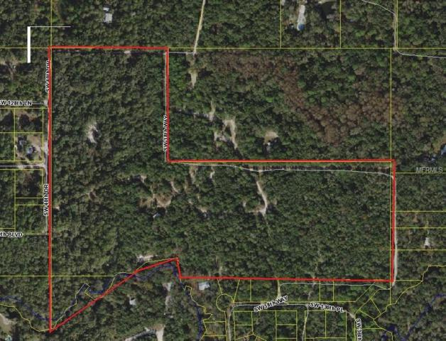 Sw 38Th Way, Webster, FL 33597 (MLS #O5727325) :: RealTeam Realty