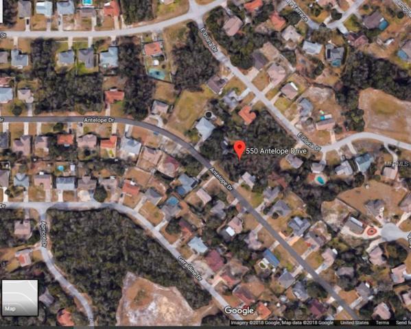 Address Not Published, Deltona, FL 32725 (MLS #O5727400) :: Baird Realty Group