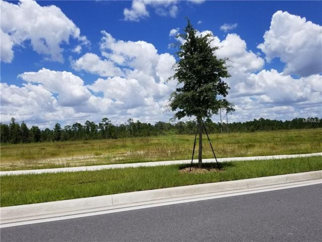 S Apopka Vineland, Orlando, FL 32821 (MLS #O5728128) :: Griffin Group