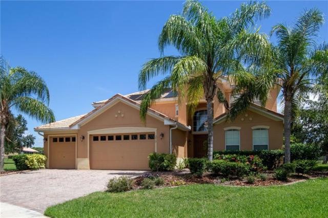 3417 Harborside Court, Kissimmee, FL 34746 (MLS #O5728215) :: The Light Team