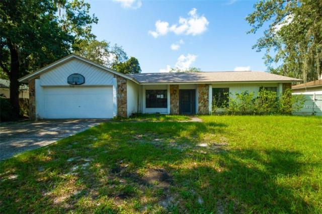 1431 Peachfield Drive, Valrico, FL 33596 (MLS #O5729256) :: The Duncan Duo Team