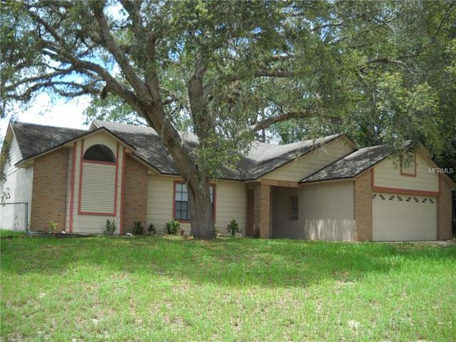3200 Phonetia Drive, Deltona, FL 32738 (MLS #O5729521) :: Griffin Group