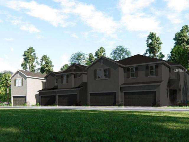 15008 Blue Quaker Place, Tampa, FL 33613 (MLS #O5730823) :: Baird Realty Group