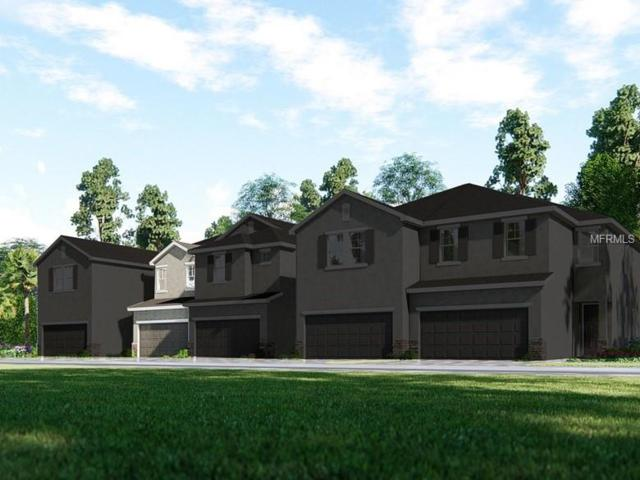 15004 Blue Quaker Place, Tampa, FL 33613 (MLS #O5730851) :: Baird Realty Group