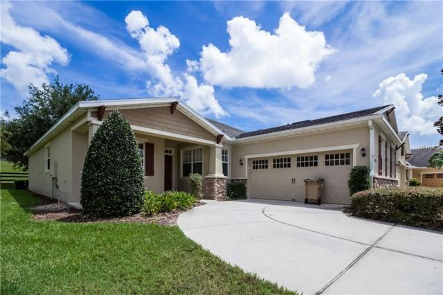 30508 Lipizzan Terrace, Mount Dora, FL 32757 (MLS #O5731071) :: Mark and Joni Coulter | Better Homes and Gardens