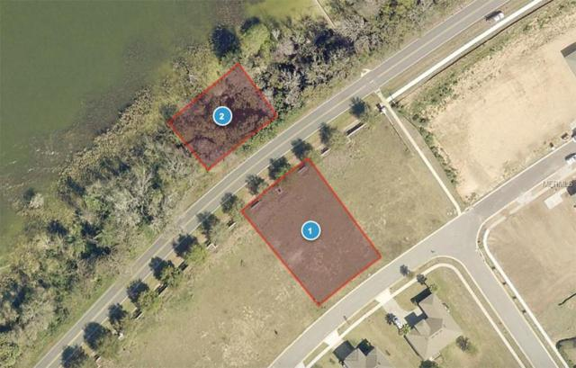 3255 Landing View, Tavares, FL 32778 (MLS #O5731617) :: The Lockhart Team