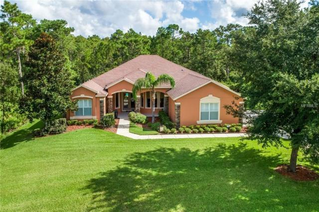 14133 Bella Lane, Orlando, FL 32832 (MLS #O5731829) :: The Lockhart Team