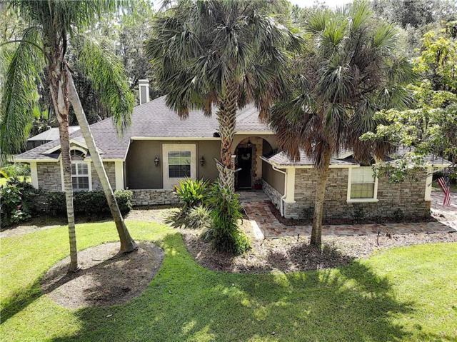 12004 Gray Birch Circle, Orlando, FL 32832 (MLS #O5731929) :: The Duncan Duo Team