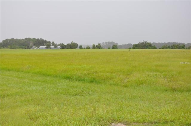 GRASS ROOTS Grass Roots Road Lot17, Groveland, FL 34736 (MLS #O5733315) :: Mark and Joni Coulter | Better Homes and Gardens