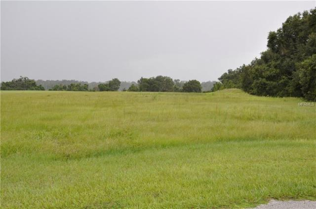 GRASS ROOTS Grass Roots Road Lot 18, Groveland, FL 34736 (MLS #O5733333) :: Mark and Joni Coulter | Better Homes and Gardens