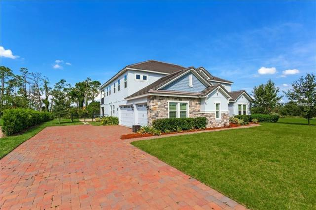 7431 Lake Albert Drive, Windermere, FL 34786 (MLS #O5733540) :: Jeff Borham & Associates at Keller Williams Realty