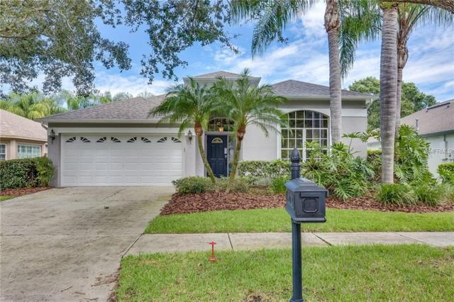 11720 Derbyshire Drive, Tampa, FL 33626 (MLS #O5733747) :: The Duncan Duo Team