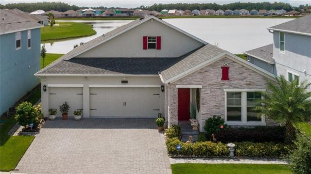 4616 Egg Harbor Drive, Kissimmee, FL 34746 (MLS #O5733797) :: Griffin Group