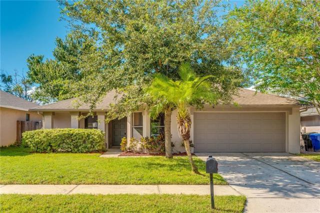 1019 Hornbeam Street, Oviedo, FL 32765 (MLS #O5733912) :: G World Properties